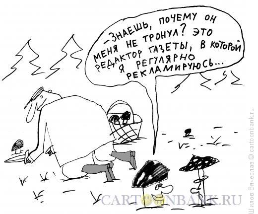 Карикатура: Умный гриб, Шилов Вячеслав