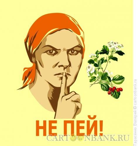 Карикатура: Настойка, Тарасенко Валерий