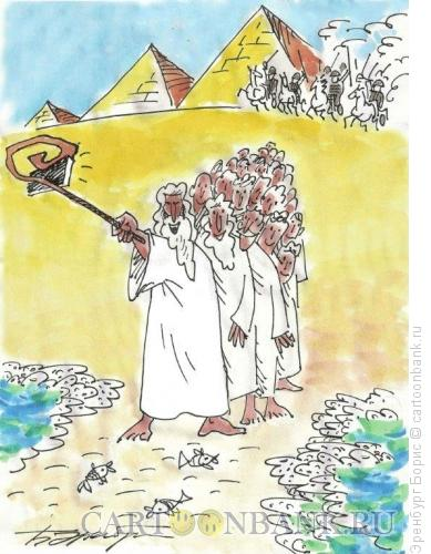 Карикатура: песах-селфи, Эренбург Борис