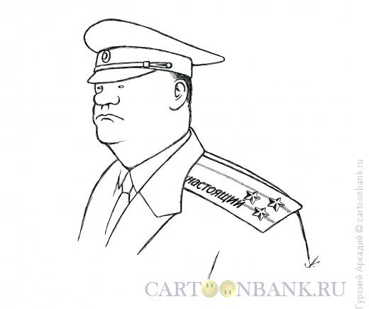 Карикатура: полковник, Гурский Аркадий