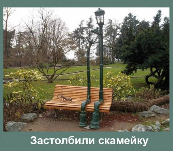 Мем: Застолбили скамейку, Радуга