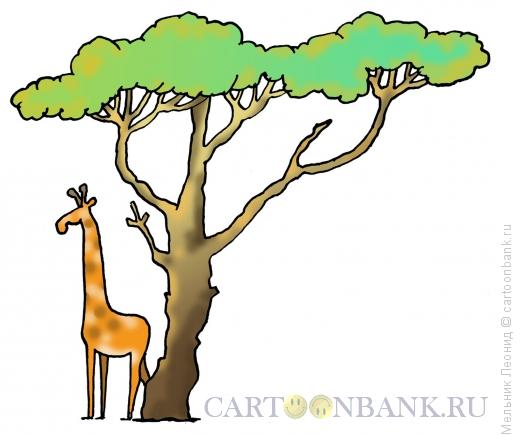 Карикатура: Экзотика, Мельник Леонид