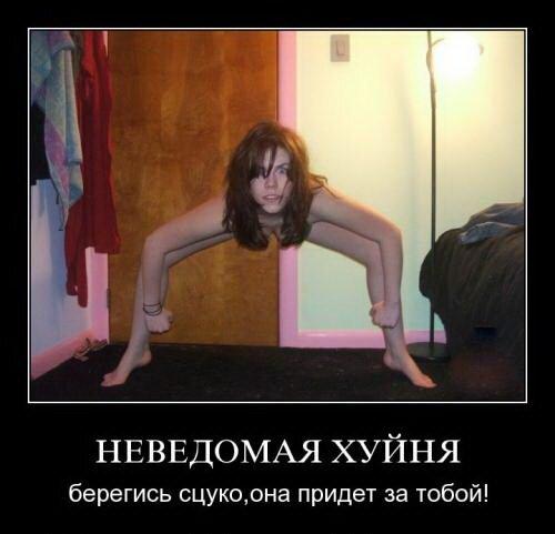 Мем: Она нечаянно нагрянет, когда ее совсем не ждешь..., Ashmedai
