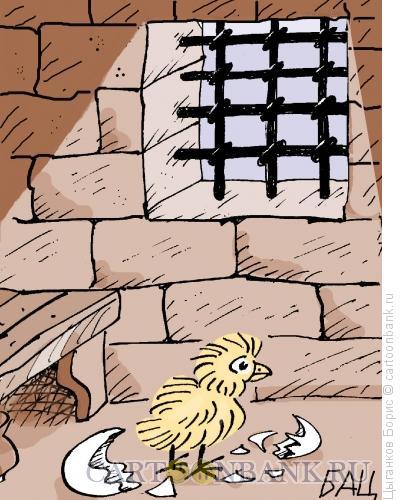 Карикатура: Цыпленок, Цыганков Борис