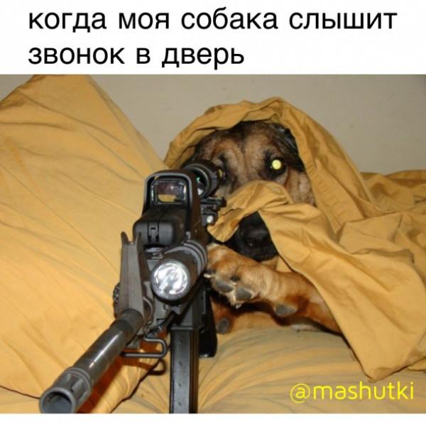 Мем: Снайпер