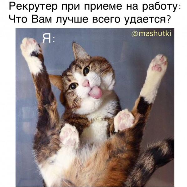 Мем: В отделе кадров