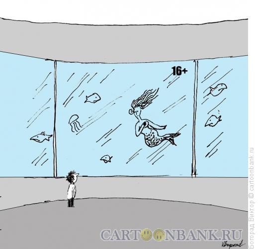 Карикатура: Предупреждение в окенауриуме, Богорад Виктор