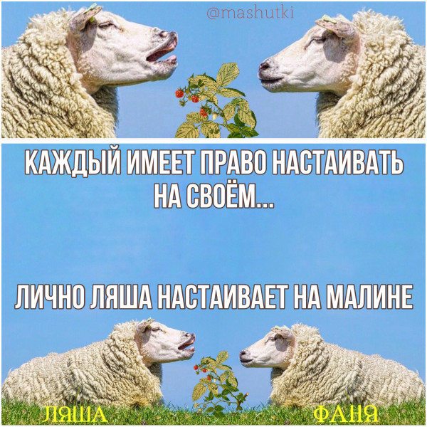 Мем: Калинка-малинка, mashutki