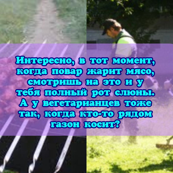 Мем: За веганов, РФ