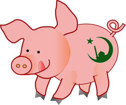 Карикатура: Свинья - мусульманка, Альпинский