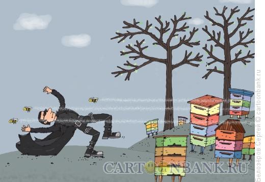 Карикатура: Пасека, Белозёров Сергей