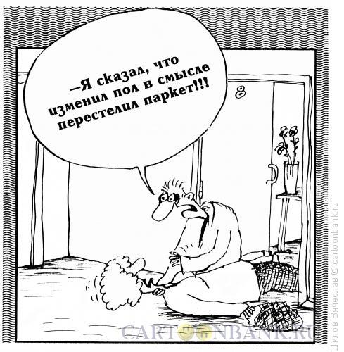 Карикатура: Паркет, Шилов Вячеслав