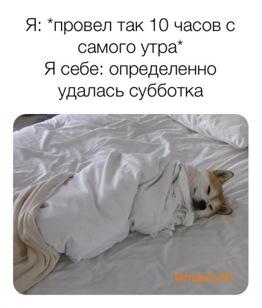 Мем: Субботка удалась, mashutki