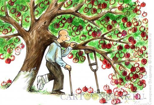 Карикатура: в саду, Семеренко Владимир
