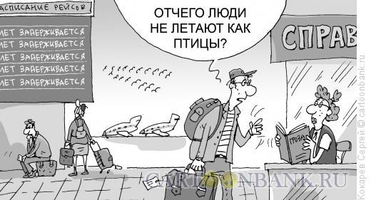 Карикатура: нелетная экономика, Кокарев Сергей