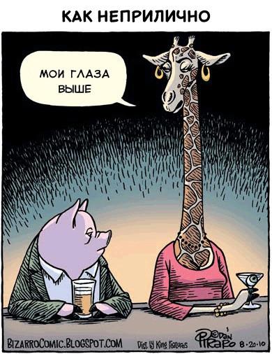 Мем: Недопонимание, Кот Отморозкин