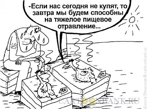 Карикатура: Курицы, Шилов Вячеслав