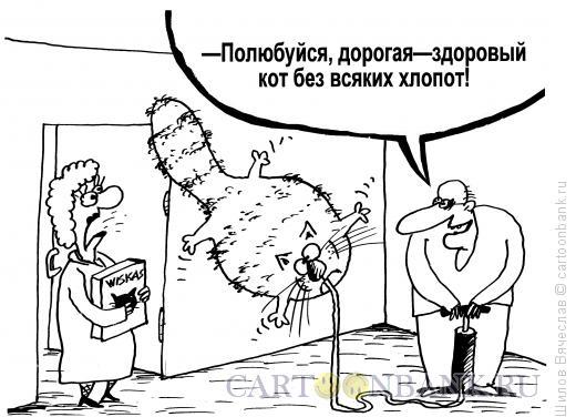 Карикатура: Здоровый кот, Шилов Вячеслав