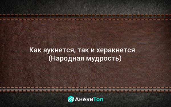 Мем: Народная мудрость, Nektus