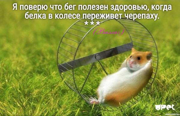 Мем: Бег и здоровье, Дед Макар