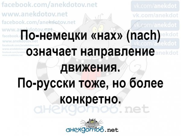Мем, Коза Зинка