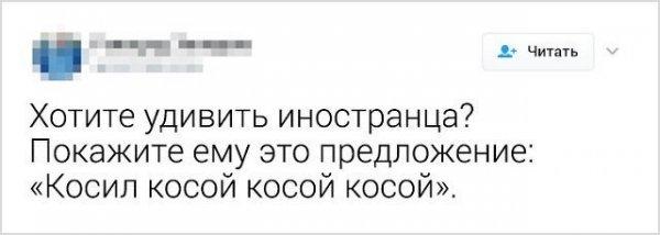 Мем: Косо кося косой косой, косой косился искоса., Grammar nazi