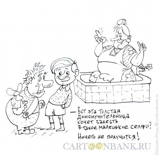 Карикатура: Фрекен Бок и селфи, Алёшин Игорь