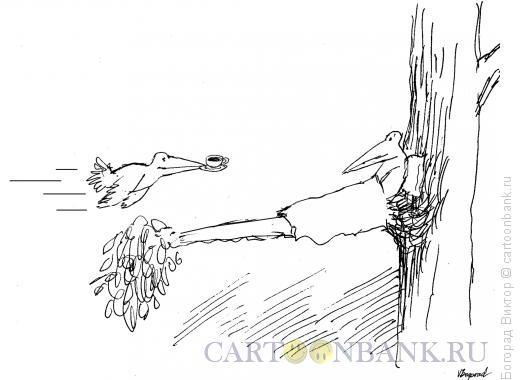 Карикатура: Утро по- птичьи, Богорад Виктор