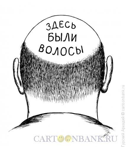 Карикатура: лысина с надписью, Гурский Аркадий