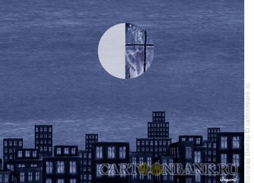 Карикатура: Ночной городской пейзаж, Богорад Виктор