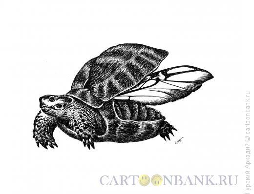 Карикатура: черепаха, Гурский Аркадий