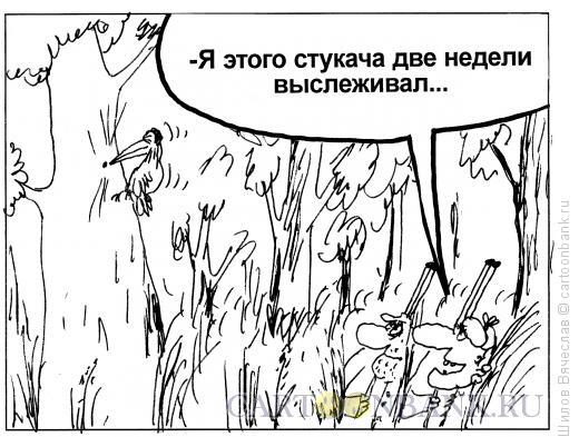 Карикатура: Дятел-стукач, Шилов Вячеслав