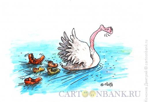 Карикатура: лебедь, Кононов Дмитрий