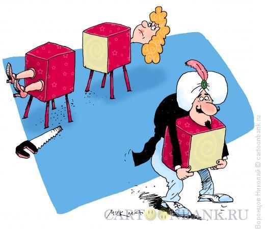 Карикатура: Волшебник, Воронцов Николай