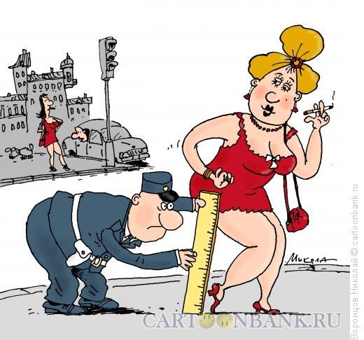 Карикатура: Полиция нравов, Воронцов Николай
