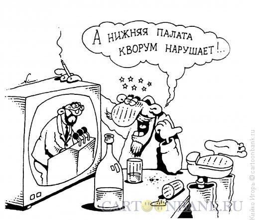 Карикатура: Нарушение кворума, Кийко Игорь