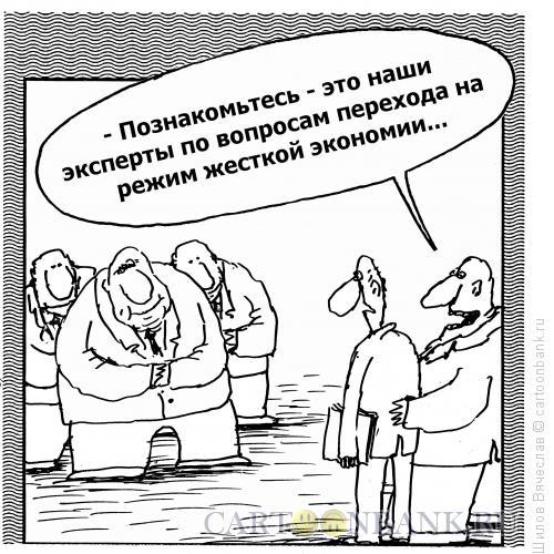 Карикатура: Эксперты, Шилов Вячеслав