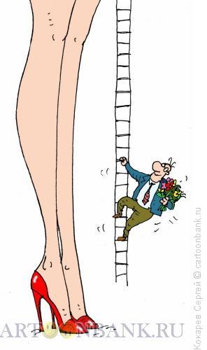 Карикатура: высокие чувства, Кокарев Сергей