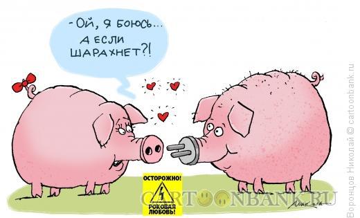 Карикатура: Роковая любовь, Воронцов Николай