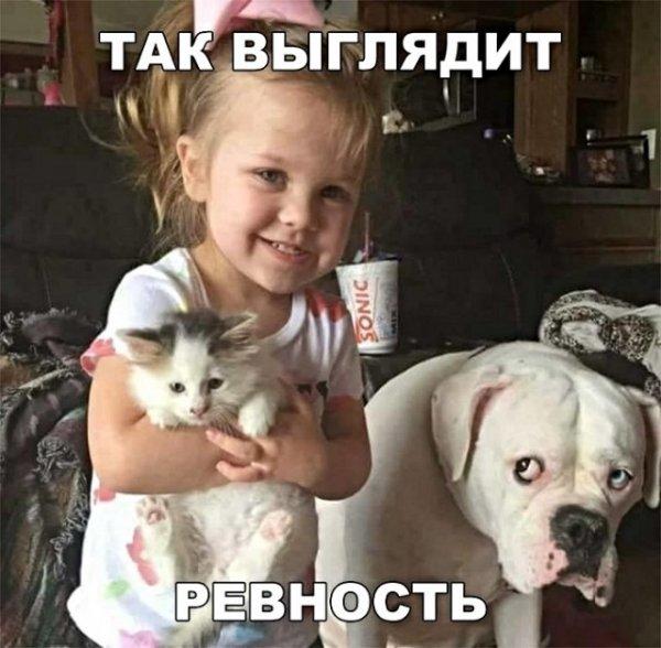 Мем: Ревность, Гексоген