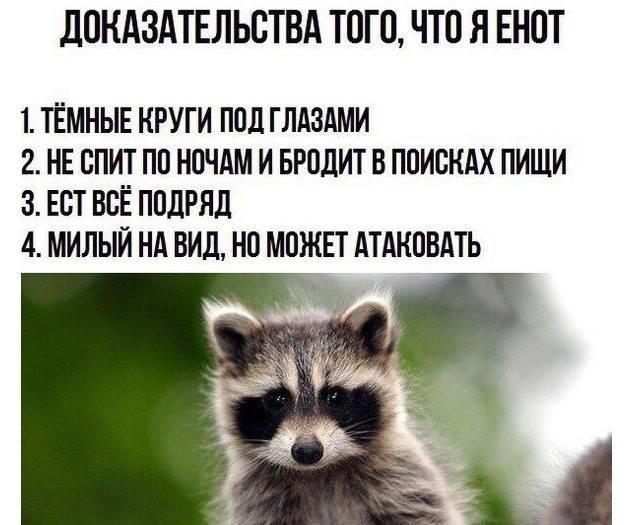 Мем, Колобок88