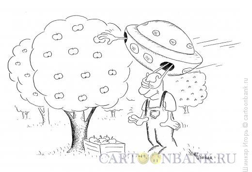 Карикатура: Воры в саду, Шинкар Игорь