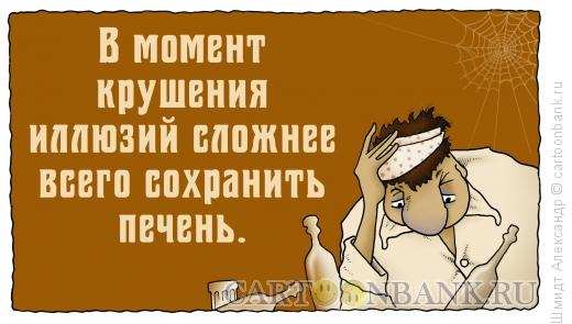 Карикатура: Так сказать-4, Шмидт Александр