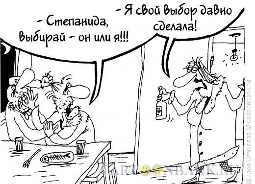 Карикатура: Выбор сделан, Шилов Вячеслав