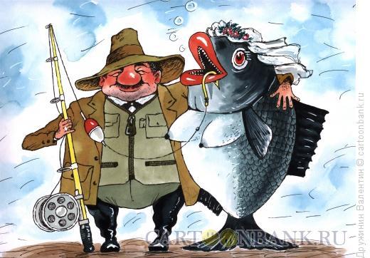Карикатура: С рыбой под венец, Дружинин Валентин