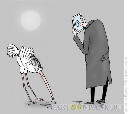 Карикатура: Дорогой айфон, Тарасенко Валерий