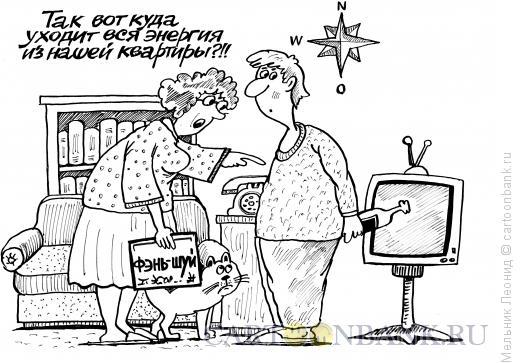 Карикатура: Фэнь-шуй колеблется, Мельник Леонид
