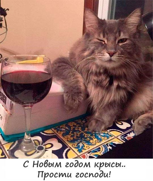 Мем: С Новым годом крысы, Dimaas