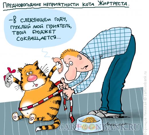 Карикатура: Бюджет сокращается, Воронцов Николай