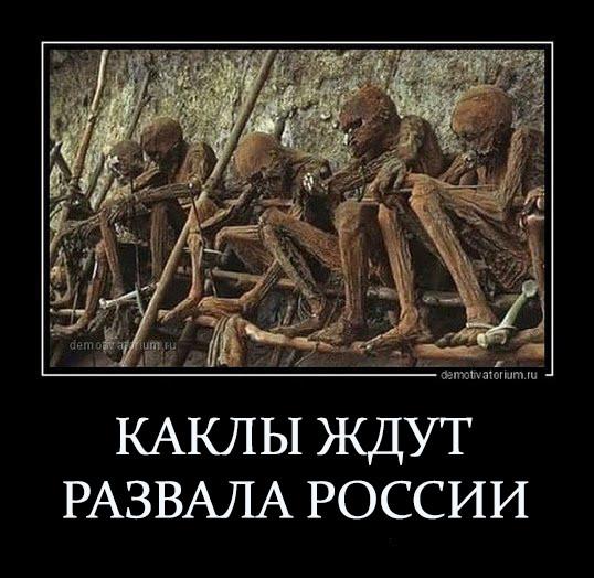 Мем: Надо только подождать..., Максим Камерер